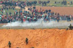 Intervista ad Omar Barghouthi,attivista palestinese