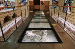 La biblioteca di Cosenza aderisce alle Giornate europee del patrimonio